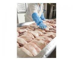 Pracownik produkcji w branży spożywczej- również dla par i kobiet